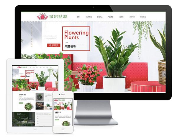 24响应式绿植花卉盆栽网站